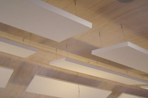 Acoustic Plus Sound Absorbing Baffle Beams