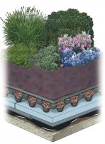 Intensive Garden Roof Example