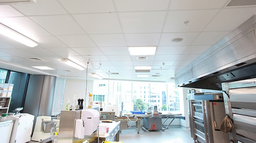 Moisture Resistant Sound Absorbing Ceiling Panels By