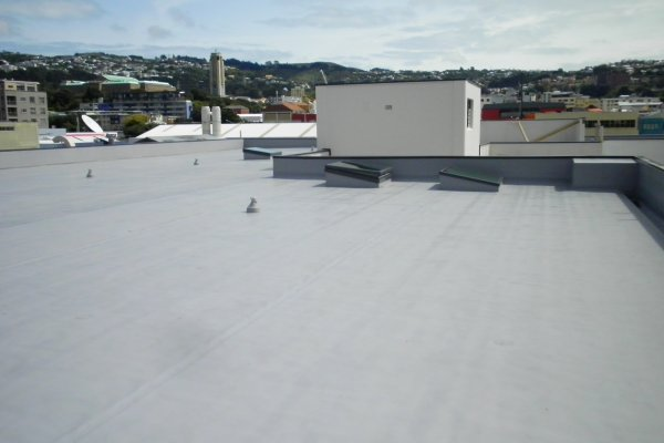 A New Roof Protects Wellington's Architectural History