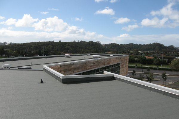 Auckland College Gets Long-Lasting Waterproof Finish with Viking Bituclad
