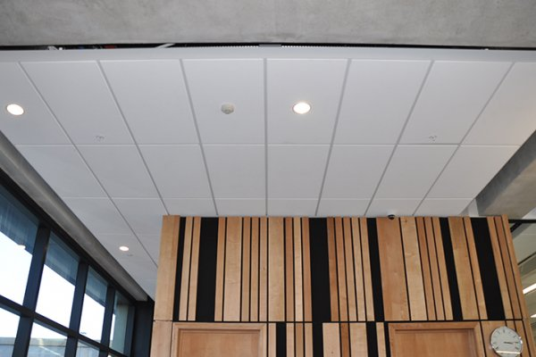 Potters Ease the Way Forward with Seismic Ceiling Design