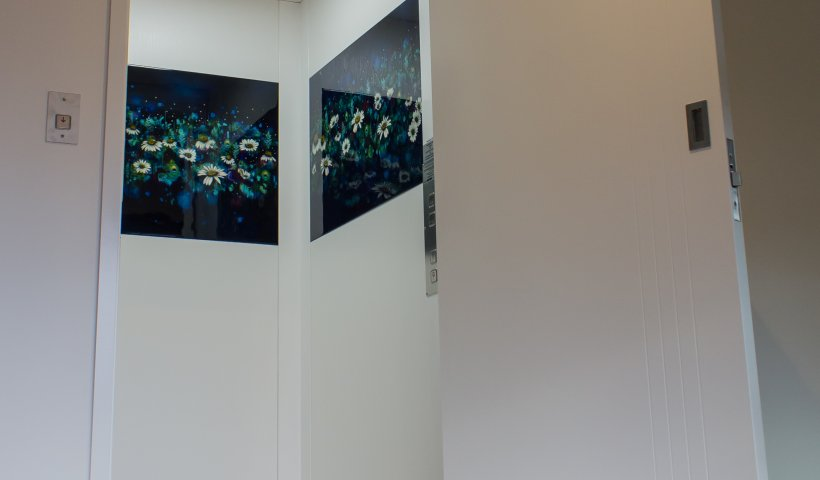 Lift Showcases Original Art in New Home