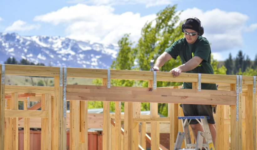 Sustainable Kiwi-Made Timber Minimises Environmental Impact